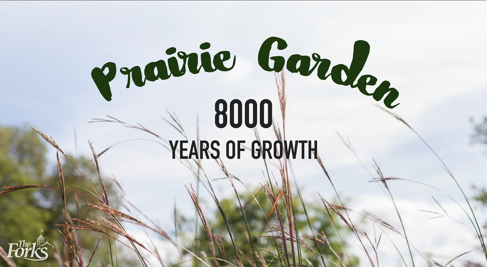 Prairie Garden 8000 Years Of Growth The Forks